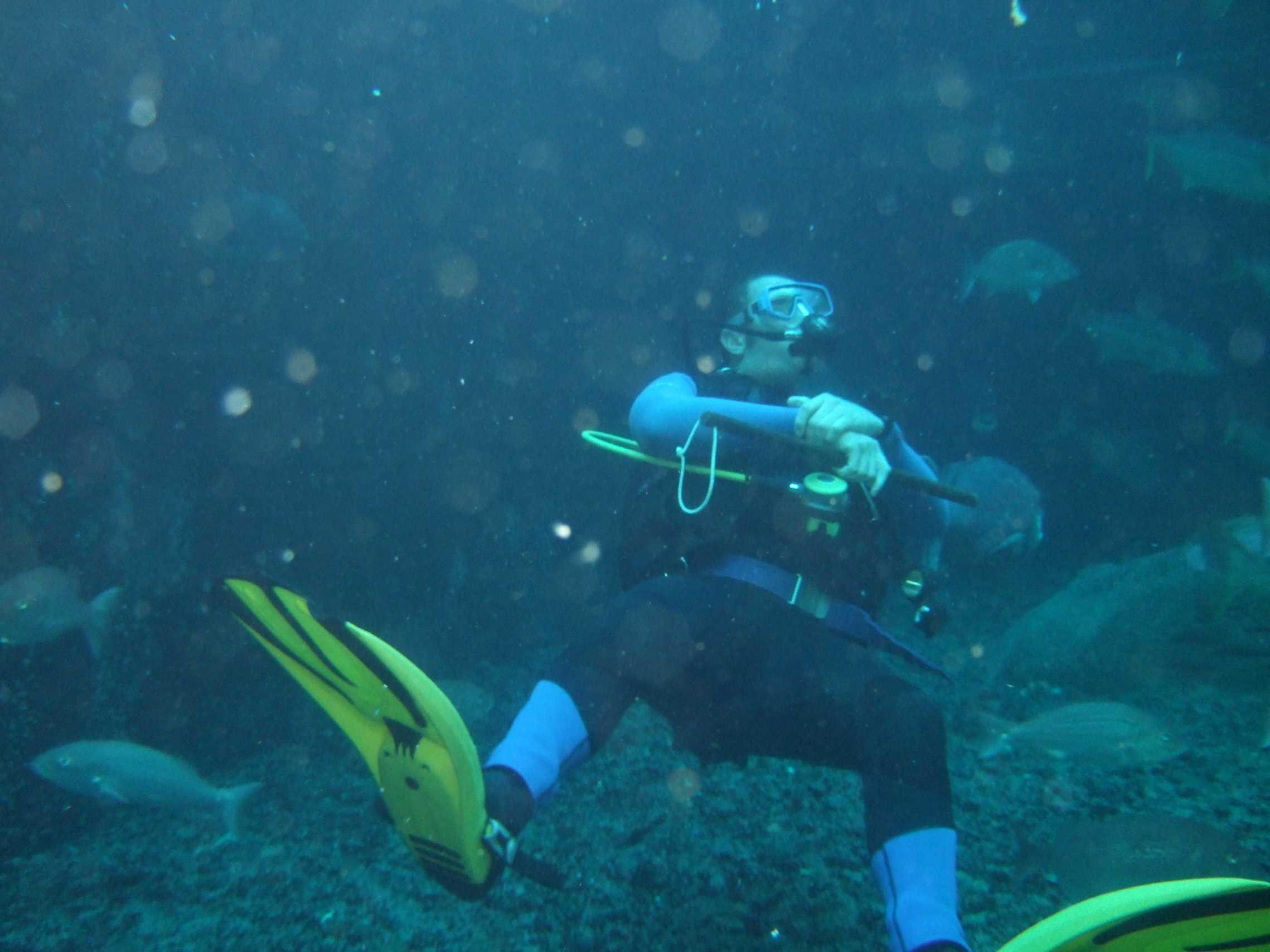 aquarium-dive-22