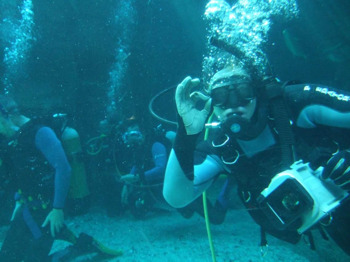 aquarium-dive-3