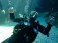 aquarium-dive-15