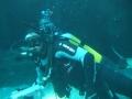 aquarium-dive-2