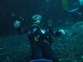 aquarium-dive-20