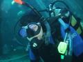 aquarium-dive-33