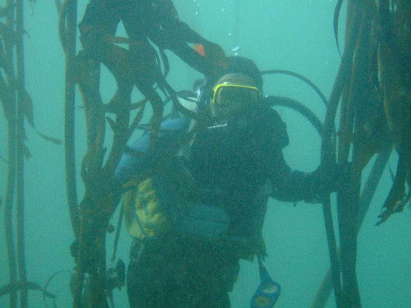 club_divers-15