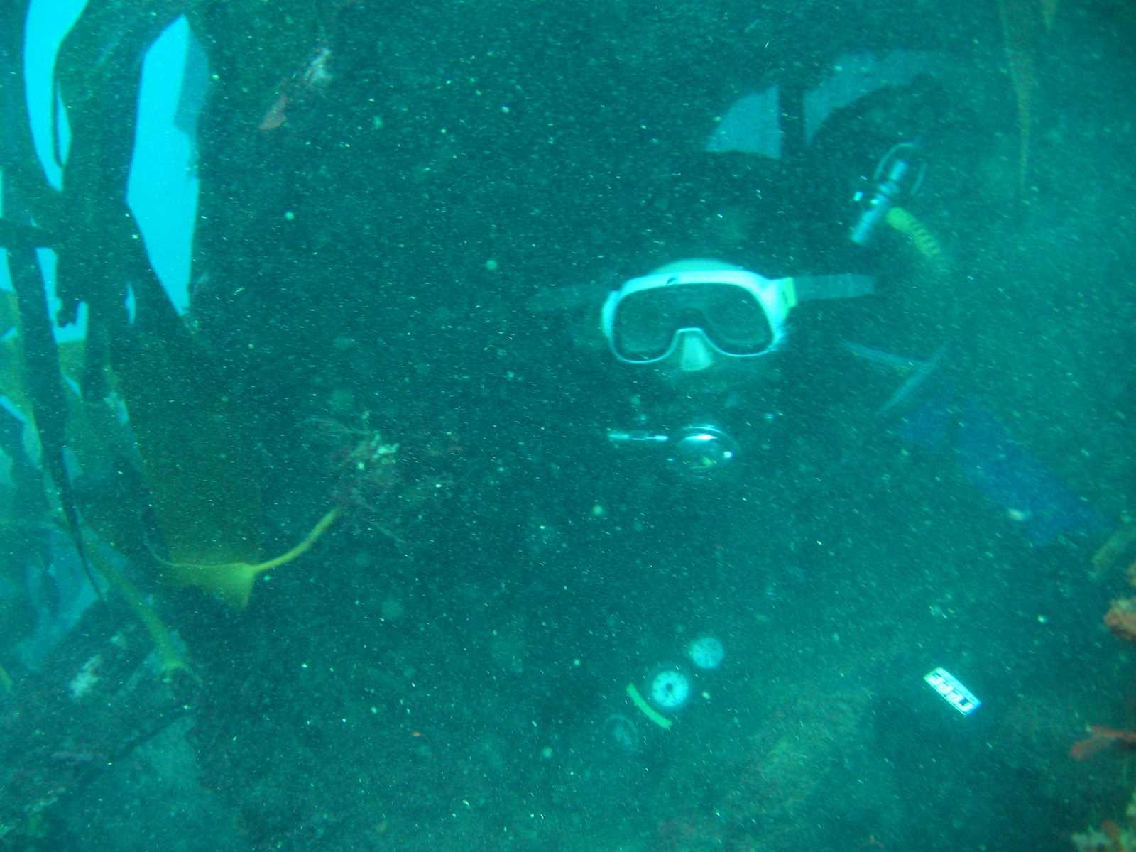 club_divers-49