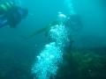club_divers-51