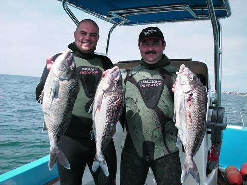 spearfishing_3