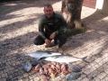 spearfishing_8