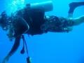 underwater-photos-18
