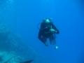 underwater-photos-25