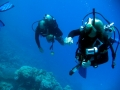 underwater-photos-26