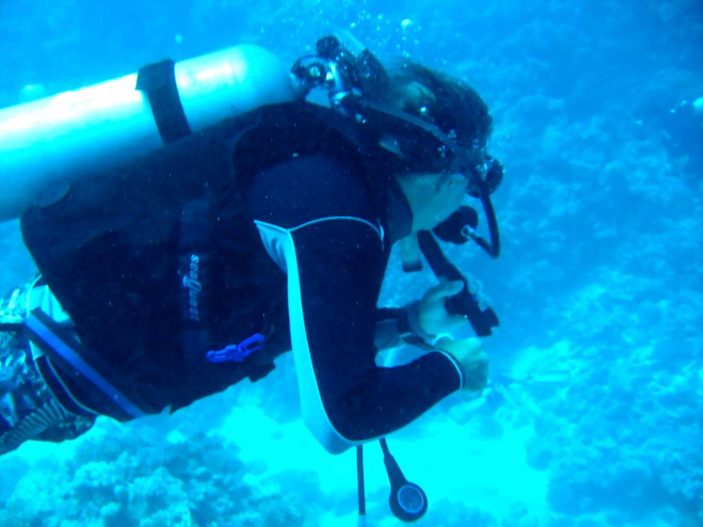 underwater-photos-20