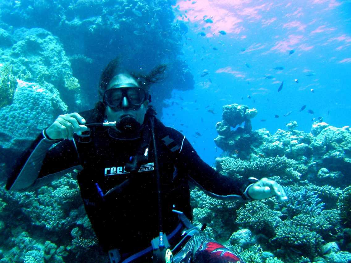 underwater-photos-56