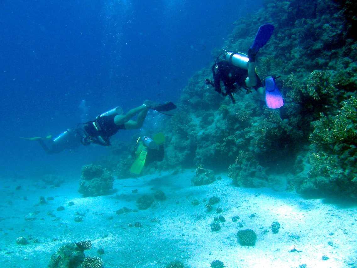 underwater-photos-62
